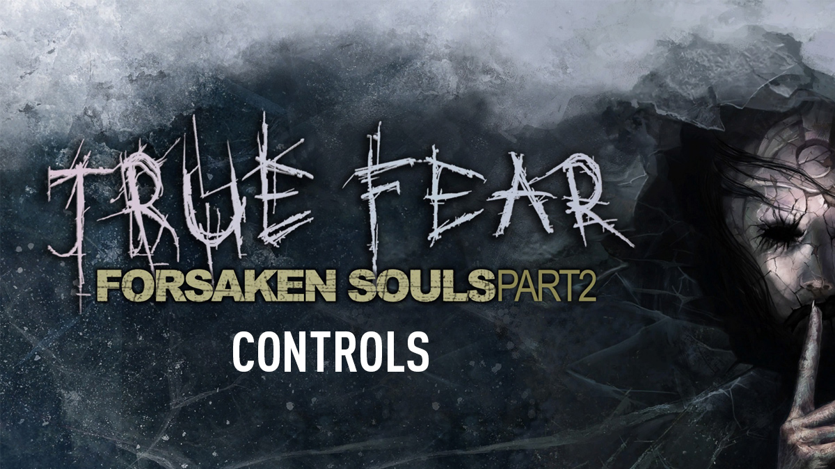 True Fear: Forsaken Souls Part 2 – Controls